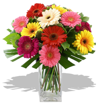 Bouquet of multicolored gerbera daisies