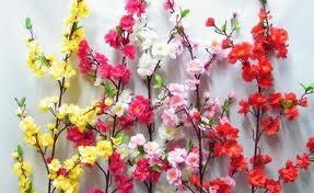 Веточки цветущего персикового дерева