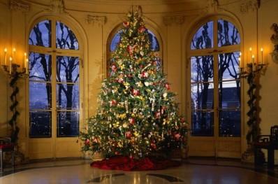 Рождественское дерево в США