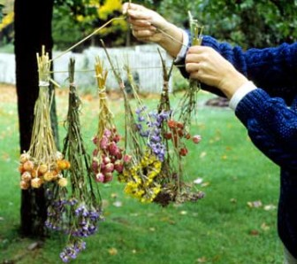 Air drying a bouquet of flowers