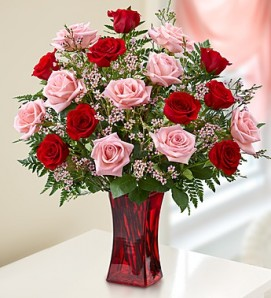 Pink and red roses arranged among greens