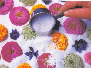 Preserving-Flowers-with-silica-gel