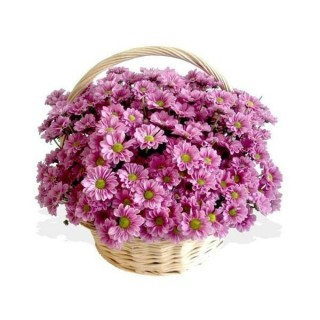 Basket Arrangement with Purple Mums