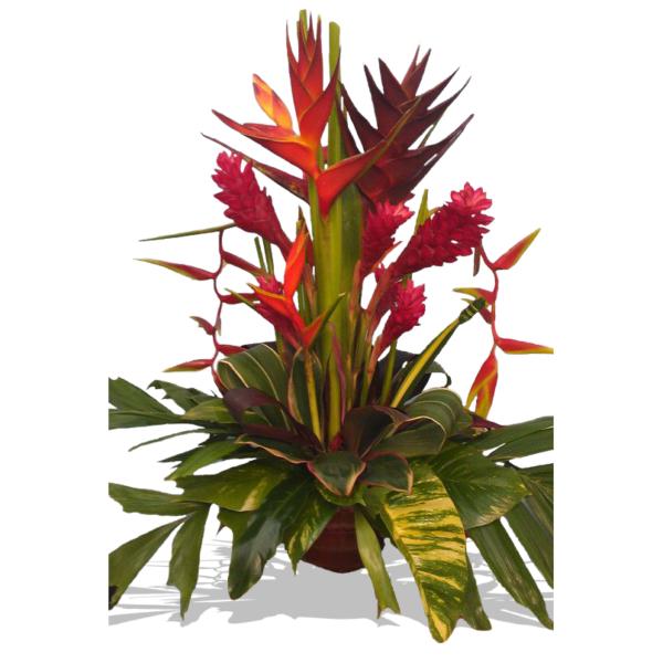 Заказать цветы на Бали