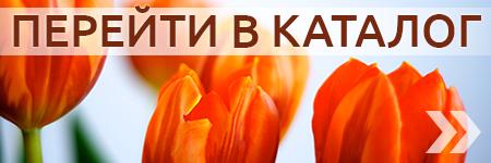 Международная доставка цветов в молдове #13
