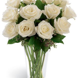 12-white-roses-to-USA