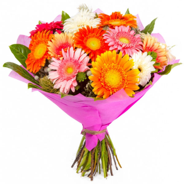 Bouquet of multicolored gerbera daisises